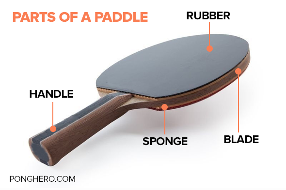 Parts of a Ping Pong Paddle